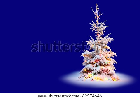 Christmas tree in snow with colored lights and blue background
