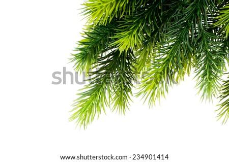 Christmas tree isolated on the white background - stock photo