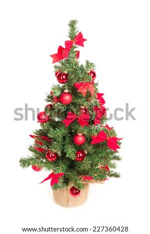 Christmas tree isolated on white background - stock photo