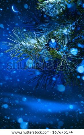 Christmas tree on night background - stock photo