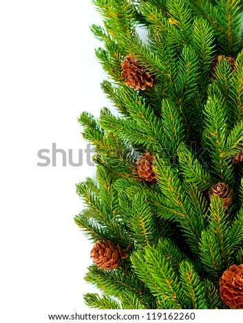 Christmas Tree with Cones border isolated on a White background. - stock photo