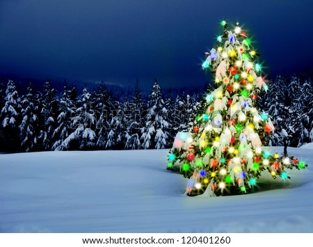Christmas tree with lights outdoors with snow - stock photo