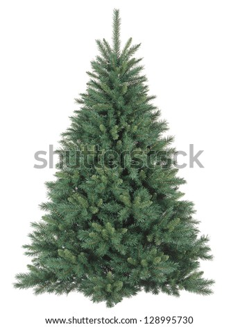christmas tree without ornaments stock photos images