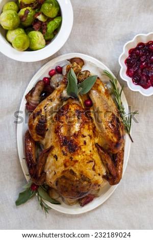 Christmas turkey - stock photo