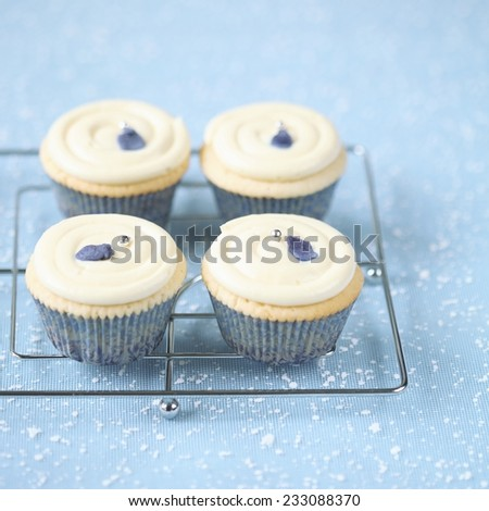 Christmas White Chocolate Violet Cupcakes on a blue background. - stock photo