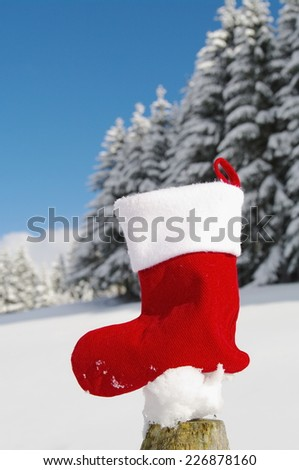 Christmas winter - stock photo