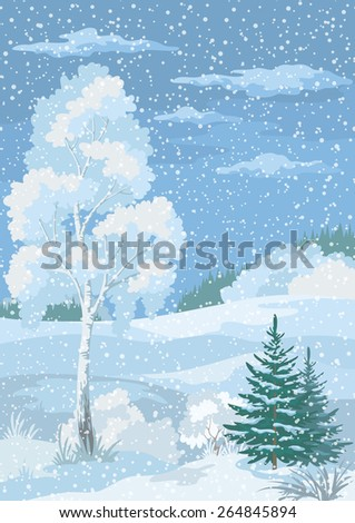 Christmas Winter Forest Landscape with Birch, Fir Trees and Sky with Snow and Clouds