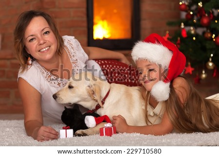 Christmas with the family pets - enjoying the warmth of a fireplace - stock photo