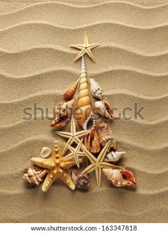 Christmass tree from shells on sand background - stock photo