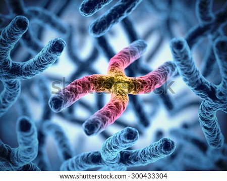 chromosomes 3d illustration - stock photo