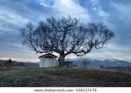 Church, field, tree and blue sky - stock photo