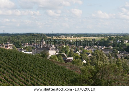 "Church of Touarc�©, French town near the vines of the ""Coteaux du Layon"" (closeup view)"