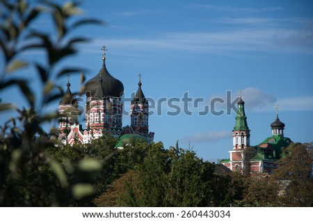 church with black domes against the blue sky in the summer for the branch of a tree