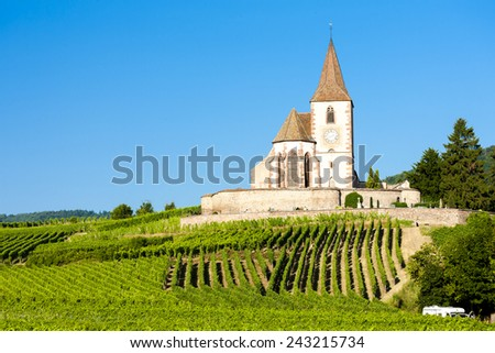 church with vineyard, Hunawihr, Alsace, France - stock photo