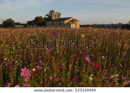 Churche, chapel with flowers field, Gironde, Aquitaine, France