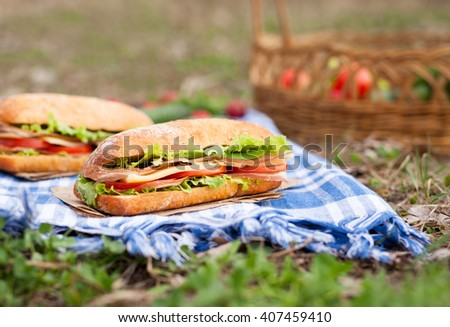 Ciabatta baguette sandwich lifestyle picnic meal with vegetables, bacon, salad, cheese and onion - stock photo