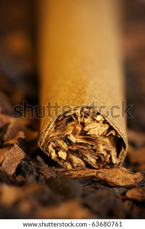 Cigar on heap of cut tobacco close-up. Selective focus on tip cigar. - stock photo