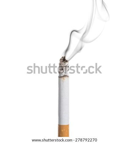 Burning Cigar Vector