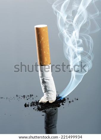 Cigarette butt with smoke - stock photo