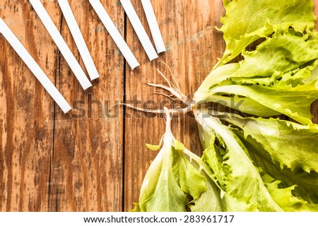 Cigarettes and lettuce on wood background. Concepts of quitting smoking. Choice between healthy lifestyle and unhealthy lifestyle.