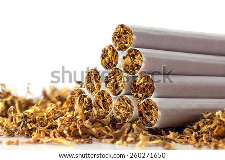 cigarettes in loose tobacco, close up with copy space in the white background - stock photo