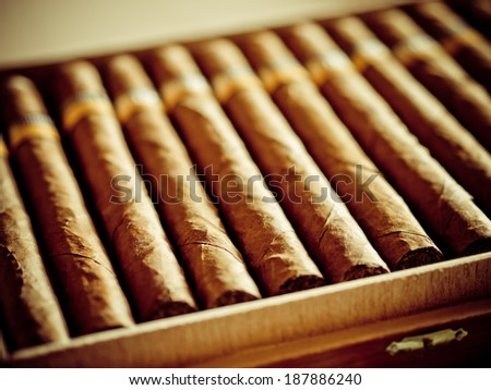 Cigars in a cigar box, toned image - stock photo