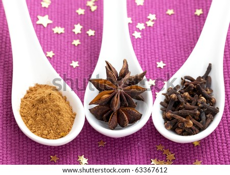 cinnamon, anise and clove on spoons - stock photo