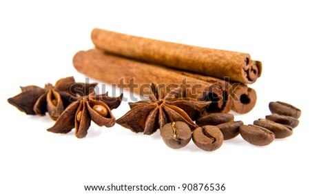 cinnamon, anise on a white background
