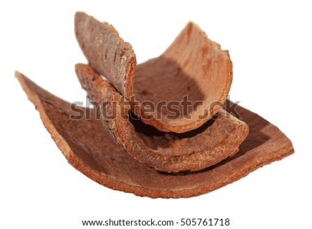 Cinnamon bark. Natural Dalchini. Isolated from white background. Soft focus.