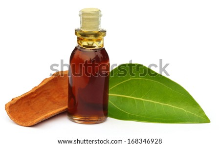 Cinnamon leaf with bark and essential oil over white background - stock photo