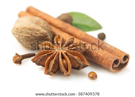 cinnamon sticks, anise star and other spices on white background - stock photo