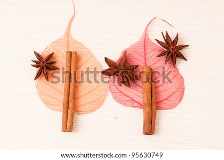 Cinnamon sticks, anise stars and skeletone leaves on table