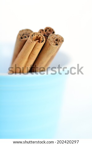 Cinnamon sticks in a bawl isolated on white background.Vertical side view with copy space.