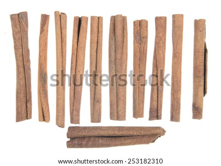 Cinnamon sticks lined up on white