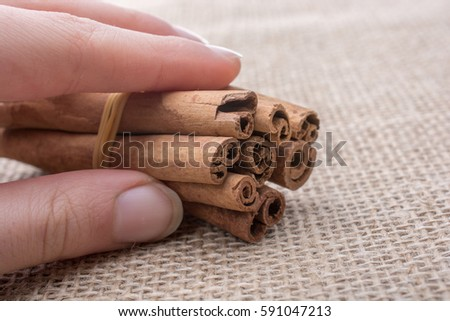 Cinnamon sticks  placed on a linen canvas