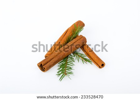 Cinnamon sticks with fir branches on white background - stock photo