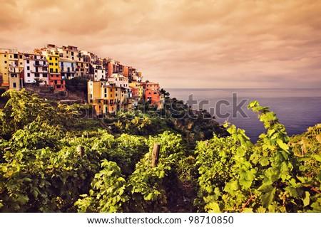 Cinque Terre, Italy. Corniglia village and vineyard. - stock photo