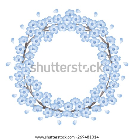 Circle of cherry blossoms. Blue./ Spring frame. The abstract shape. - stock photo