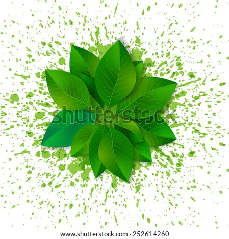 Circle of fresh green leaves on white background with bright green splashes.  - stock photo
