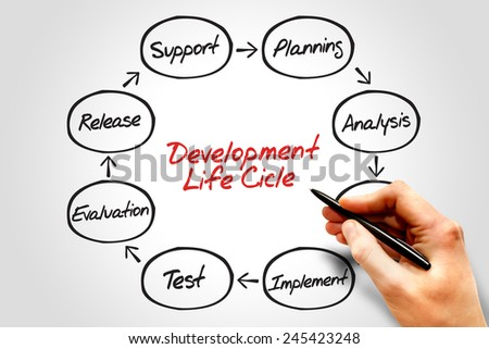 Circular flow chart of life cycle development process, business concept