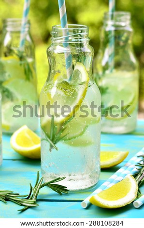 Citrus fizz with rosemary in a bottle. - stock photo