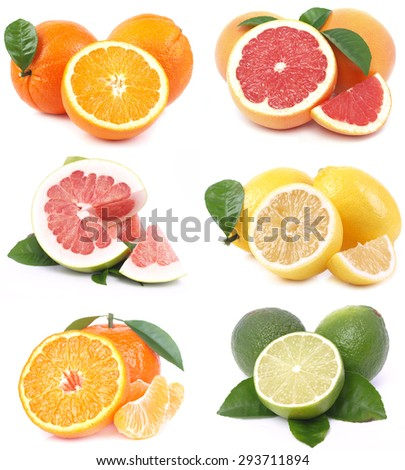 Citrus fruit - stock photo