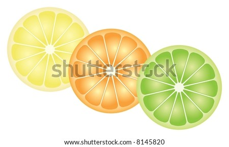 Citrus Fruit - lemon, orange and lime slices (also available as vector)