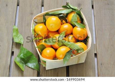 Citrus fruits against wooden background.  - stock photo