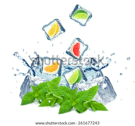 citrus fruits ,ice cubes and water splash isolated on white