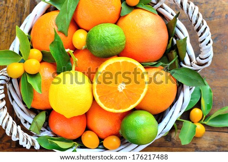 Citrus fruits in rustic background.Fresh oranges, lemon, mandarins, clementines, grapefruits, kumquats. - stock photo