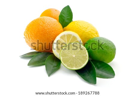 citrus on white background  lime, orange, lemon halves of lime and lemon foliage of citrus trees