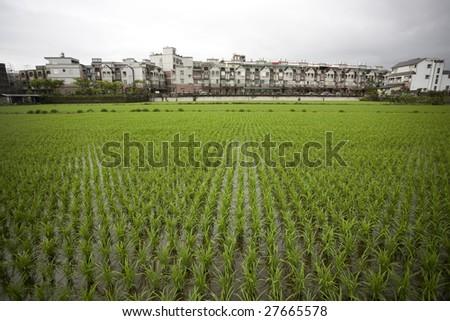 city near by farm - stock photo