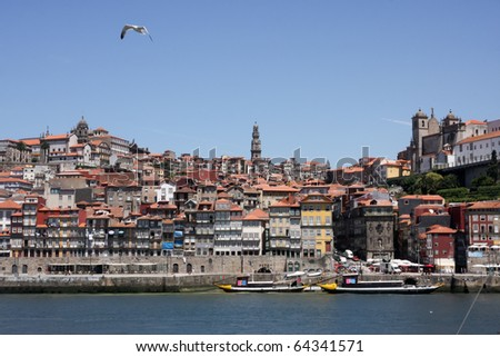 City of Oporto Portugal with Gull in Flight