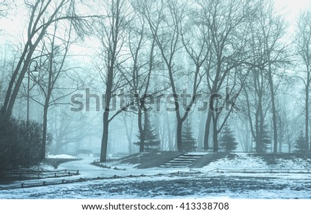 City Park in the fog, picture in blue-green tones of the trees  people without